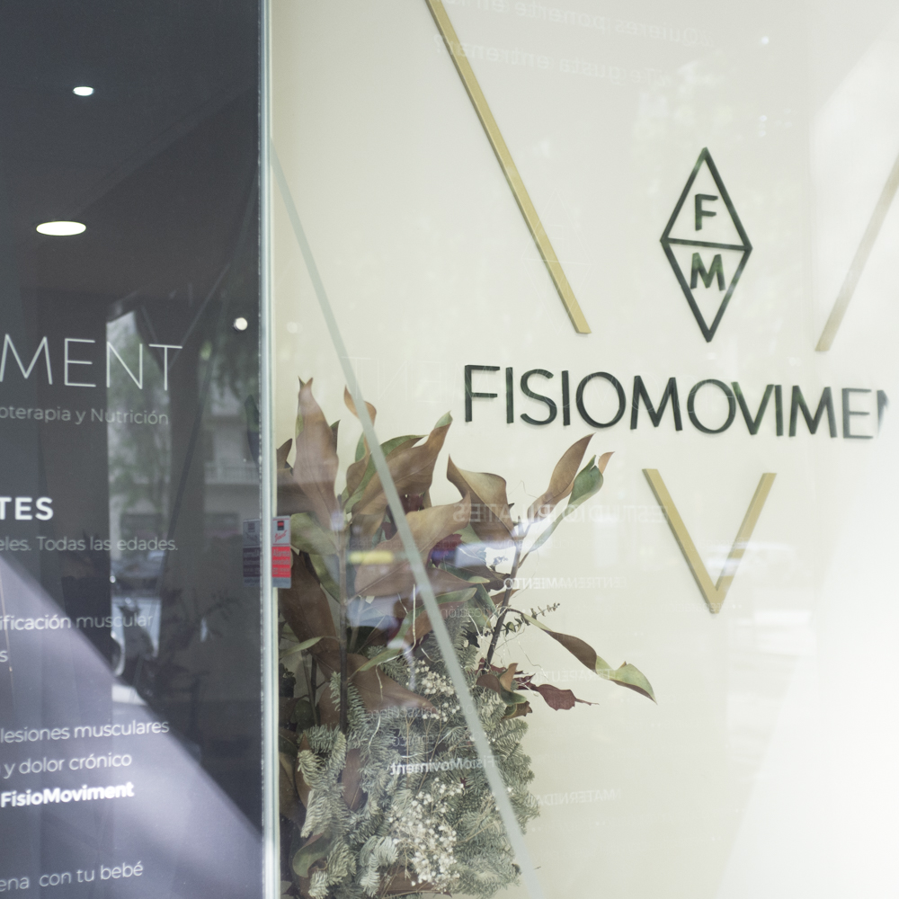 branding, shop window design and visual identity